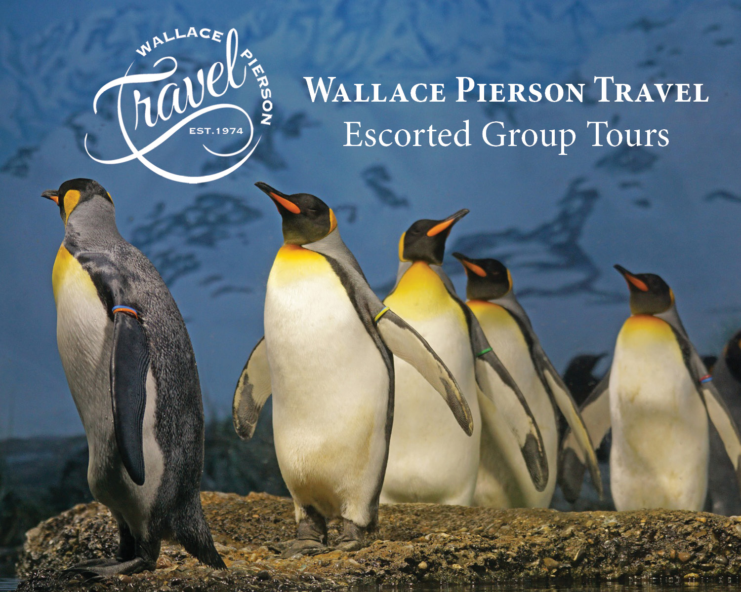 Escorted Group Tours 107