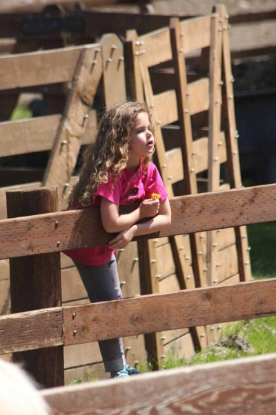 Ella Enjoying Time at the Barn