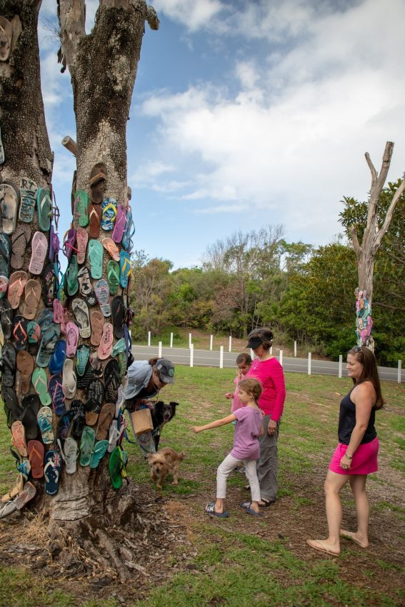 A visit to the Thong Tree