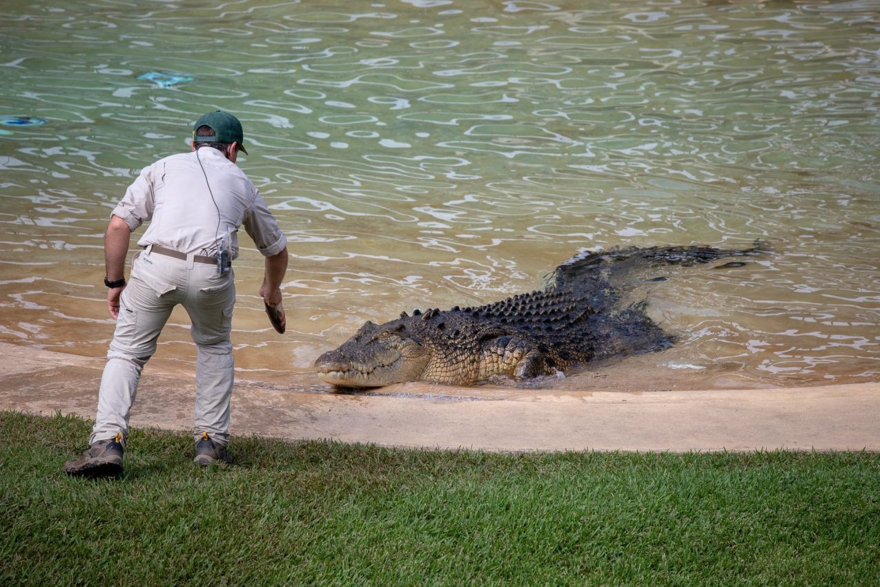 Getting too close during the Croc show