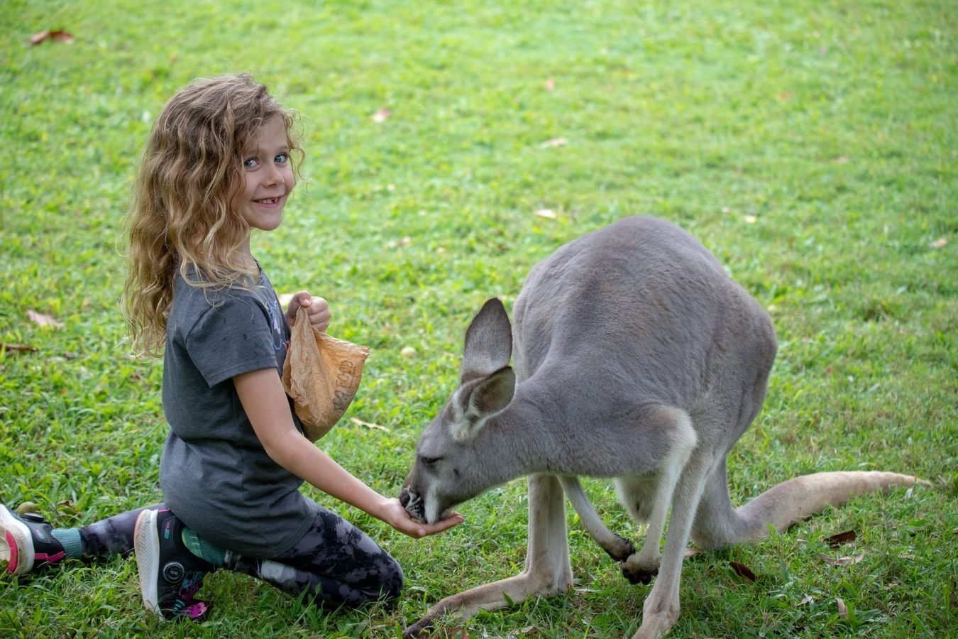 Making friends at the Australia Zoo