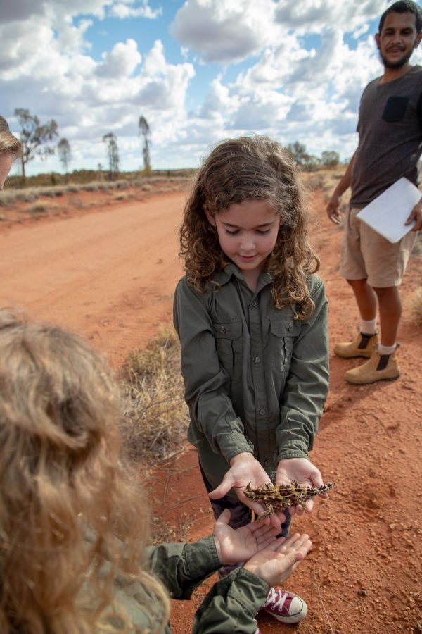 Taking turns holding the Thorny Devil