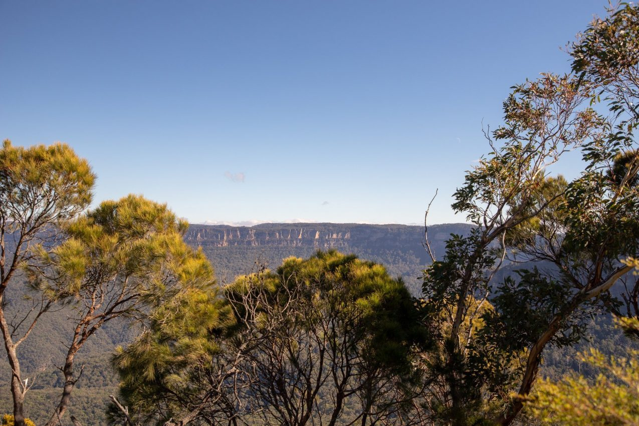 , Sydney, Taronga Zoo, & the Blue Mountains