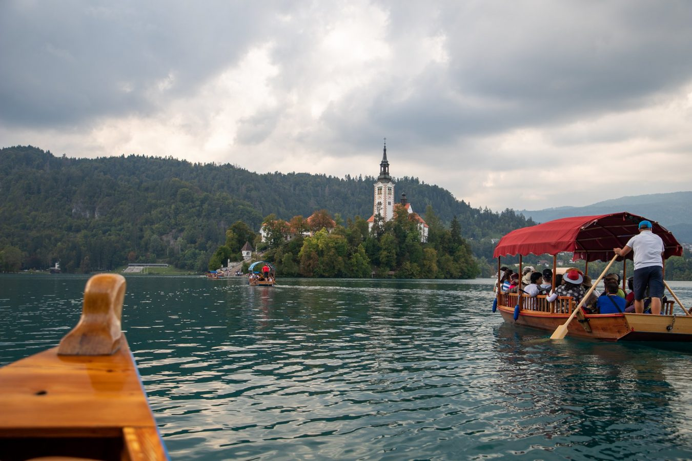 Rowing across to the only island of Slovenia