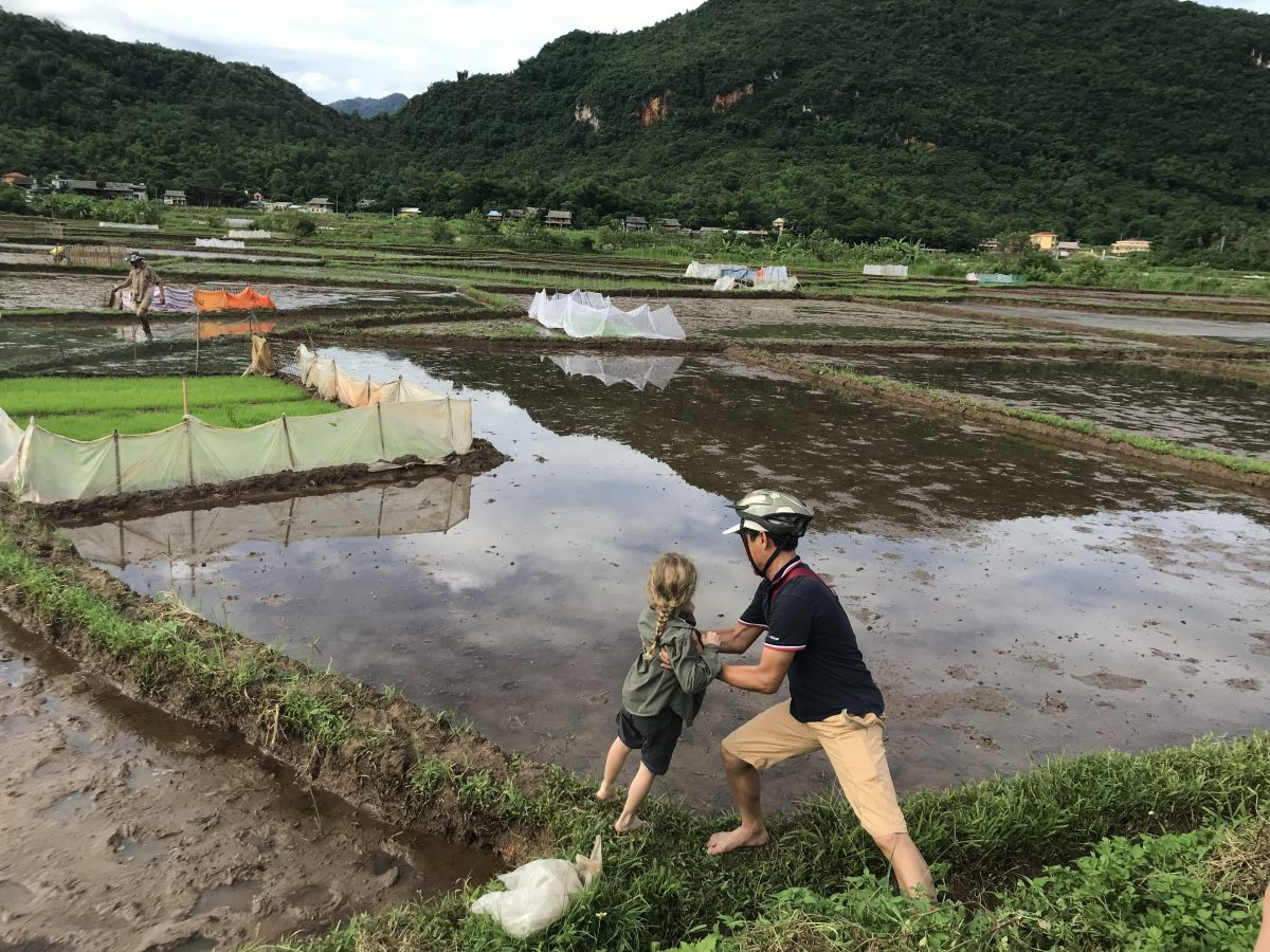 Getting into the Rice Paddy